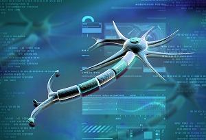 neurofascia-revealed-course-hos