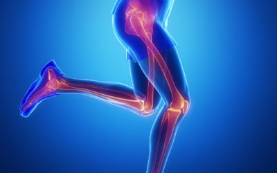 PT-5: Hip-Knee & Ankle Pathology, Evidence Problem-Based Manual Therapy
